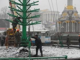 Основная елочка Киева