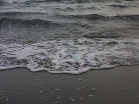 Одесский берег