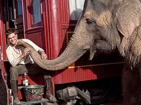 Жидкости слонам