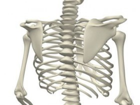 костяк