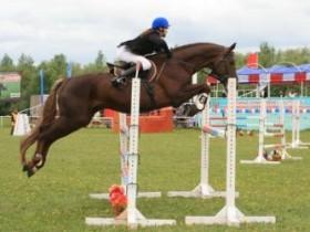 конник спорт