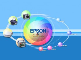 Организация Epson