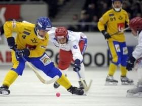 Чемпионат мира по хоккею с мячом