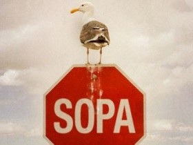 Стоп On-line Piracy Act,SOPA