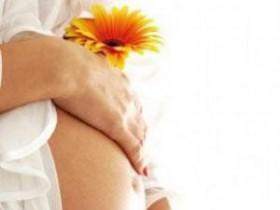 беременость