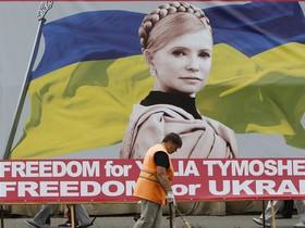 тимошенко, баннер