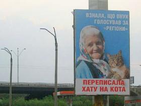 билборд, бабушка, кот