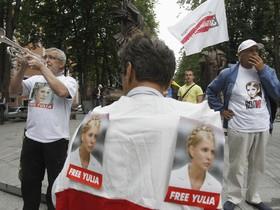 Тимошенко, митинг