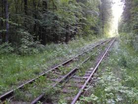 железные дороги,жд,рельсы,