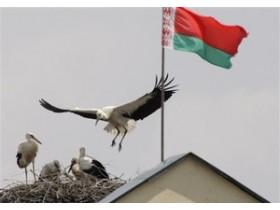 флаг Белорусии