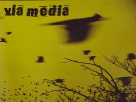 Виа Медиа
