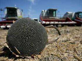 сельскохозяйственные,земели