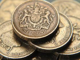 монеты,фунт