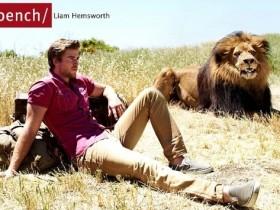 Актёра Лайама Хемсворта чуть не употребил в пищу реальный лев (Фото)