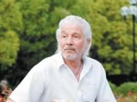 Михай Волонтир