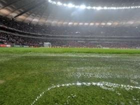 лвень,мокрый газон,дождь,стадион,