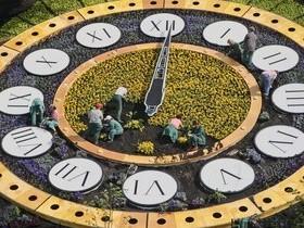 цветочные,часы
