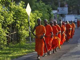 монахи,буддисты