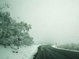 Погода,,зима,,туман