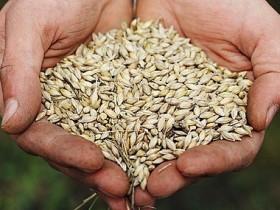 сельскохозяйственный,ресурс