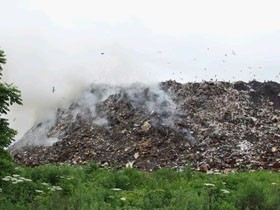 Свалки для мусора