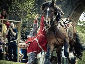 конные каскадеры