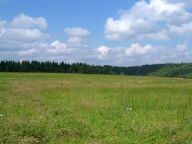 земельный,участок