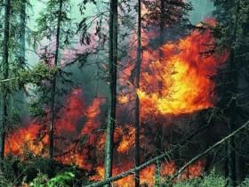 дивный пожар