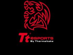 ТТ eSports