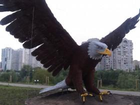 орел на позняках