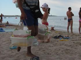 креветки на пляже