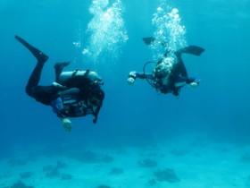 аквалангисты