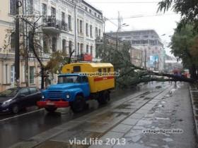 дерево снизилось на проезжую часть