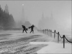 снежный ветер