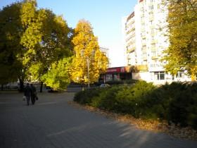 В понедельник киевлянам заулыбается солнце