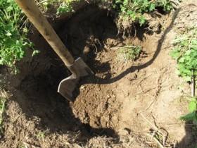 лопата,огорода