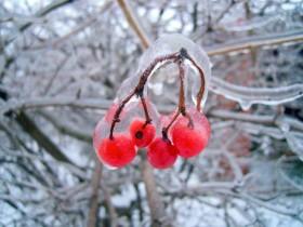 зима, холодной ливень