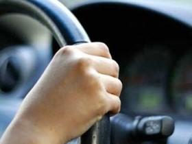 руль,водитель