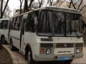 автобусы с беркутом