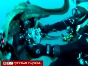 атака осьминога