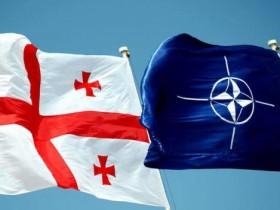 НАТО,Грузия,