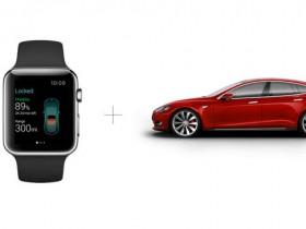 Apple Watch for Tesla Car