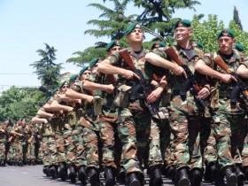 грузия,армия