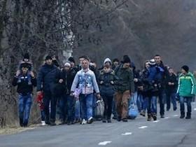 миграция сербы