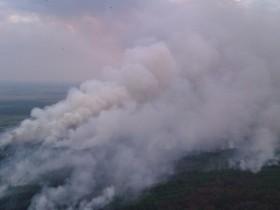 пожар сухая трава