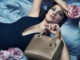 Dior,сумка,