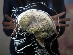 мысли,мозг,