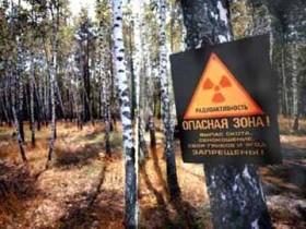 Детям чернобыльцев могут за пределами состязания идти в Университеты