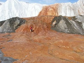 В Антарктике нашли древнейшие мельчайшие организмы