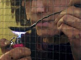 Ликвидирована шайка, поставлявшая в России наркотики и ружье